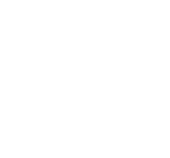 Blame Vanity – Virgin Hair Boutique